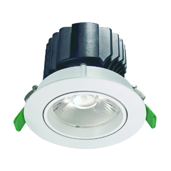 Crown Adj Downlight.small image